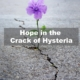 Finding Hope through COVID-19 Hysteria