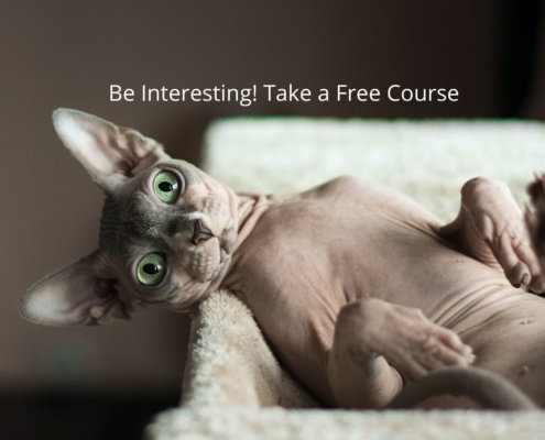 How to Be Interesting Free Mini-Course